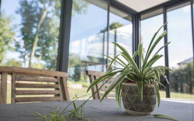 Véranda à toit plat : La solution Ouverture de Dext Extension
